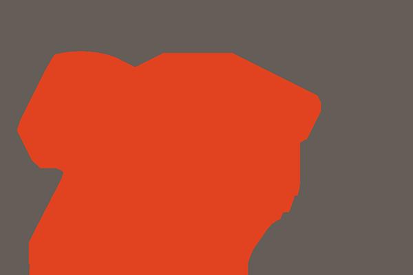 Selo 25 anos